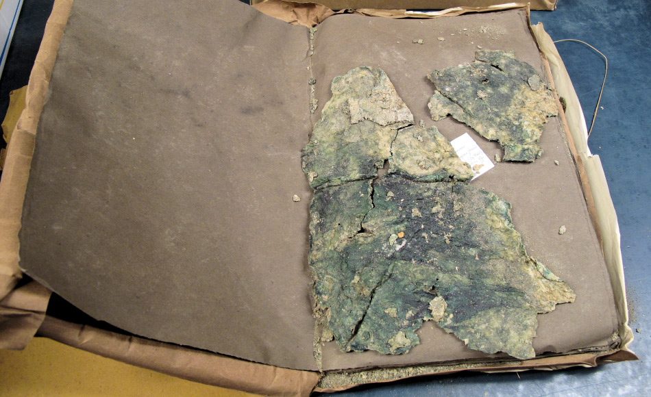 Ein Stück aus einem Herbarium gesammelter Cyanobakterien und Mattengemeinschaften, die auf dem McMurdo-Eisschelf im Rahmen der Discovery-Expedition gesammelt worden waren. Bild: Taylor & Francis