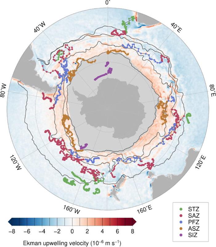 Die Karte zeigt die Messungen, die im Laufe der Jahre 2014 – 2017 von den Drohnen vorgenommen worden waren. Bisher hatte man nur Daten aus der Drake Passage. Hellgrau zeigt das Packeis an und die dunkelorangen Bereiche sind diejenigen Orte mit höher-als-erwartet-Mengen von CO2. Bild: Alison Gray, UW