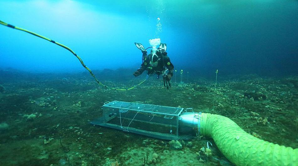 Die Schläuche führen das angereicherte Wasser in die Kammer und exponieren so die Organismen den höheren CO<sub>2</sub>-Mengen. Photo: Johnny Stark