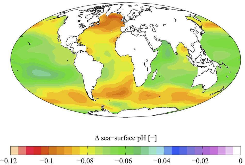 Die Welt-Ozeane werden immer sauer. Gezeigt ist hier die geschätzte Veränderung des Meerwasser-pH-Wertes (ein Maß für den Säuregehalt des Wassers), die durch das von Menschen erzeugte Kohlendioxid verursacht wurde. Gelb und orange zeigen eine Zunahme des Säuregehalts zwischen den 1700er und 1990er Jahren an. Die Daten basieren auf dem Global Ocean Data Analysis Project (GLODAP) und dem World Ocean Atlas. (Bild: Wikipedia, Plumbago)
