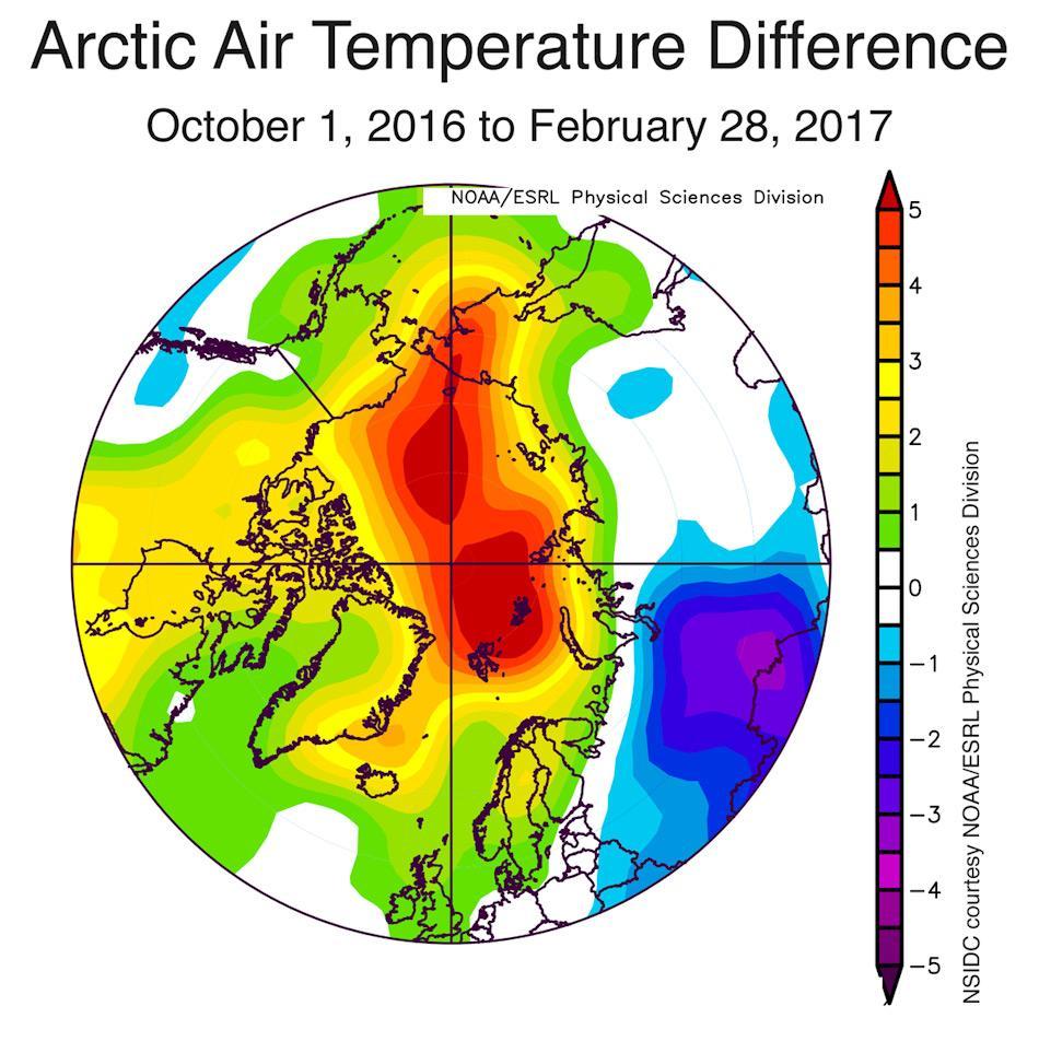 Die Grafik zeigt die arktischen Lufttemperaturunterschiede vom 1. Oktober 2016 bis 28. Februar 2017. Gelb, orange und rot sind die überdurchschnittlichen Temperaturen, blau bis Purpur unterdurchschnittlich. Grafik: NSIDC