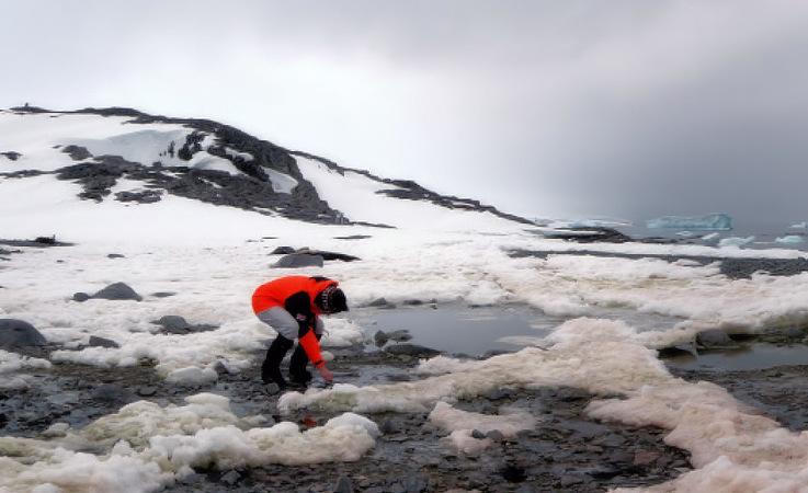 Die Geowissenschaftlerin Julia Kleinteich entnimmt Proben aus Süsswassertümpeln mit Mikroben drin