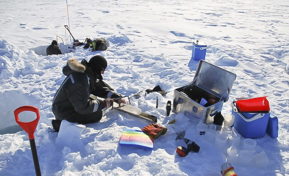 Die Temperaturen in Nordostgrönland können im Mai bis zu -20°C erreichen. Daher müssen die Forscher gut ausgerüstet sein, wenn sich das Labor auf dem Meereis befindet. (Bild: Kasper Hancke)