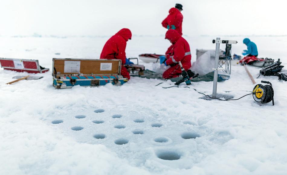 Eine Biogeochemiegruppe des deutschen Forschungsteams des Alfred-Wegener-Instituts bei der Arbeit. Auf einem kleinen Areal, auf dem sie mit einem hohlen Bohrer das Eis durchbohren, entnehmen sie Eiskerne und zersägen sie in kurze Stücke, die die Schichten von der Eisoberfläche bis zur Unterkante repräsentieren. Diese wandern gut dokumentiert in Tüten und werden auf dem Schiff von verschiedenen Gruppen analysiert. Nach dem Auftauen wird z.B. ein Kern gefiltert, um die Menge an Eisalgen zu bestimmen. Bild: Stefan Hendricks