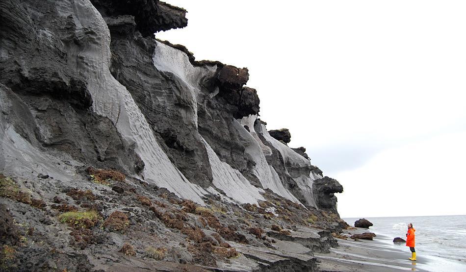 Bilder von der erodierenden Steilküste der kleinen, russischen Insel Muostakh -östlich der Hafenstadt Tikisi gelegen. Auf diesem Bild lässt sich erahnen, warum man in den Anfangszeiten der Permafrostforschung vermutete, es befänden sich keine Eiskeile, sondern ganz Gletscher im Untergrund. Foto: Thomas Opel, AWI