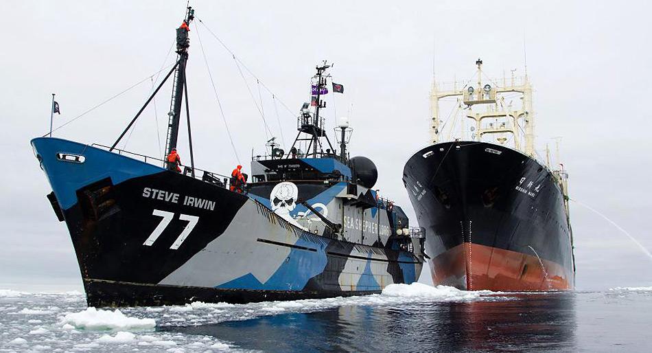 Das Sea Shepherd Schiff «Steve Irwing» im Einsatz gegen den Walfänger «Nisshin Maru».
