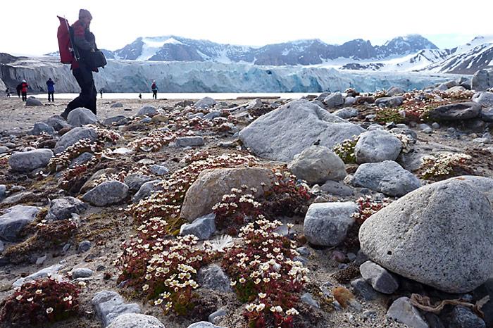 027_spitzbergen_2010