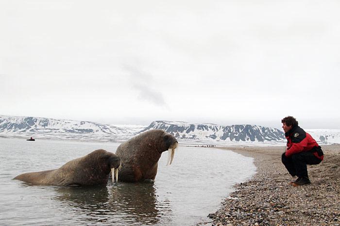 041_spitzbergen_2010