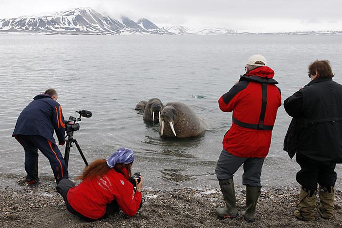 043_spitzbergen_2010